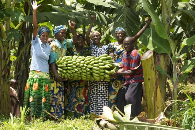 Rwanda: Le gouvernement lance un service en ligne pour faciliter le commerce agro-alimentaire