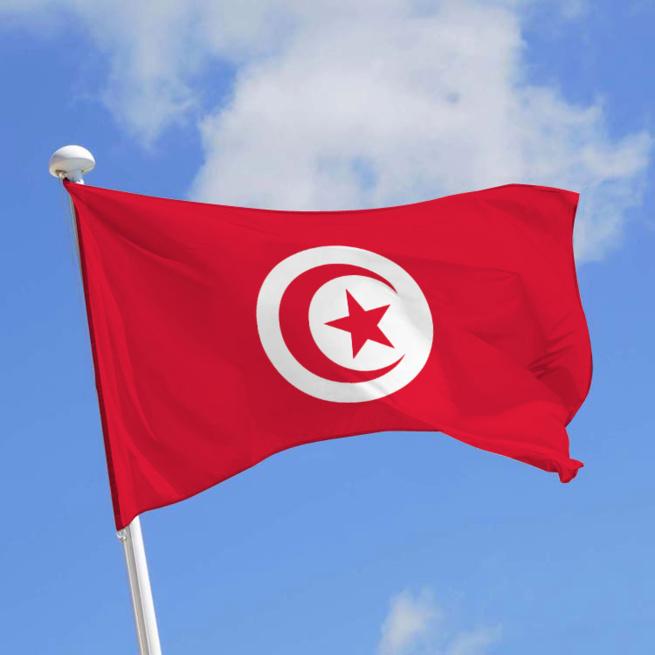 Tunisie: Carte d'identité à puce intelligente et passeport biométrique intégrés d'ici fin 2016