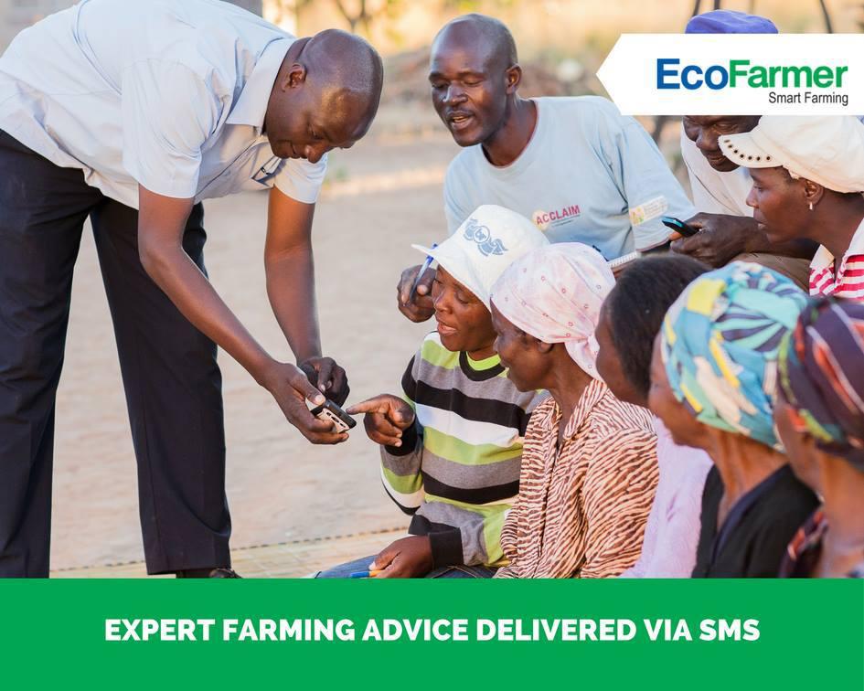 Zimbabwe: Econet lance EcoFarmer Club pour moderniser l'agriculture