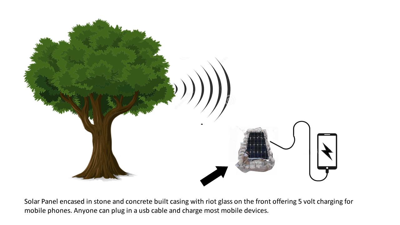 Un entrepreneur zimbabwéen invente une technologie qui transforme un arbre en hub Wi-Fi