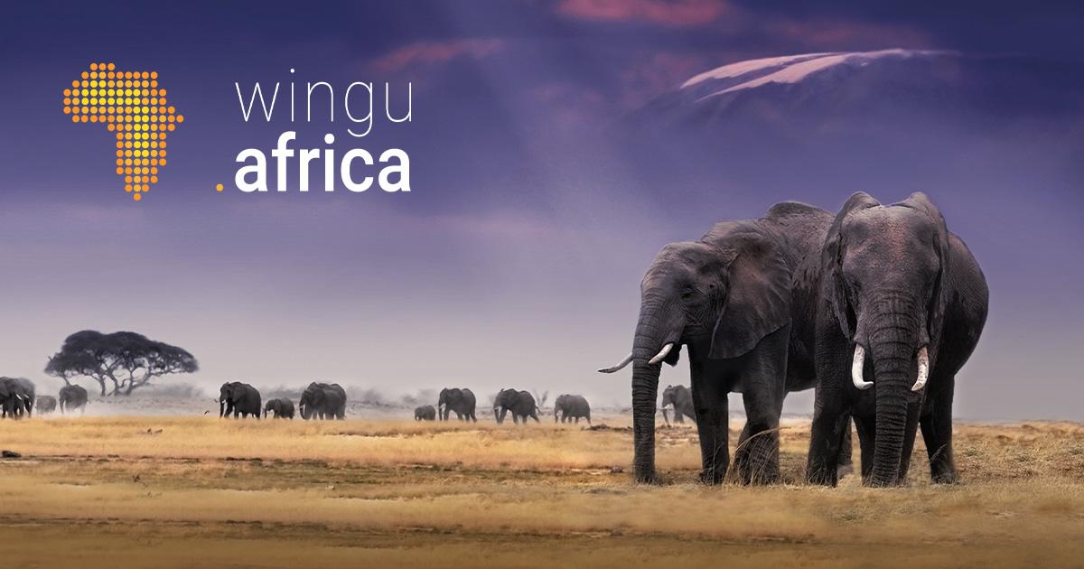 wingu.africa fait son entrée sur le marché des data center en Ethiopie