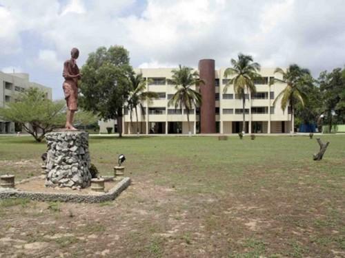 Cote d'Ivoire: 28 milliards FCFA pour l'aménagement des 180 hectares du Vitib