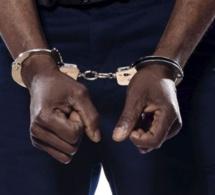Cybercriminalité - Deux Nigérians arrêtés pour avoir volé 15 millions $ à des firmes américaines