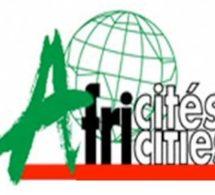 Les collectivités locales d'Afrique désormais munies d'un portail internet