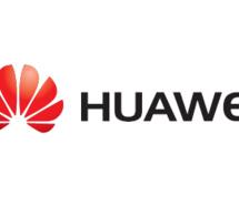 Huawei va construire 520 km de fibre optique entre le Congo et le Gabon