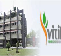 Cote d'Ivoire: Accord de partenariat entre le Vitib et la commune de Grand Bassam