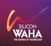 """Egypte : lancement de l'initiative de parc informatique """"Silicon Waha"""""""